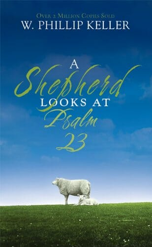 41 - A Shepherd Looks at Psalm 23
