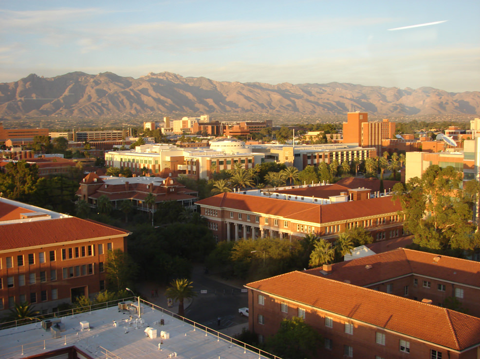 university-of-arizona-linguistics-degree