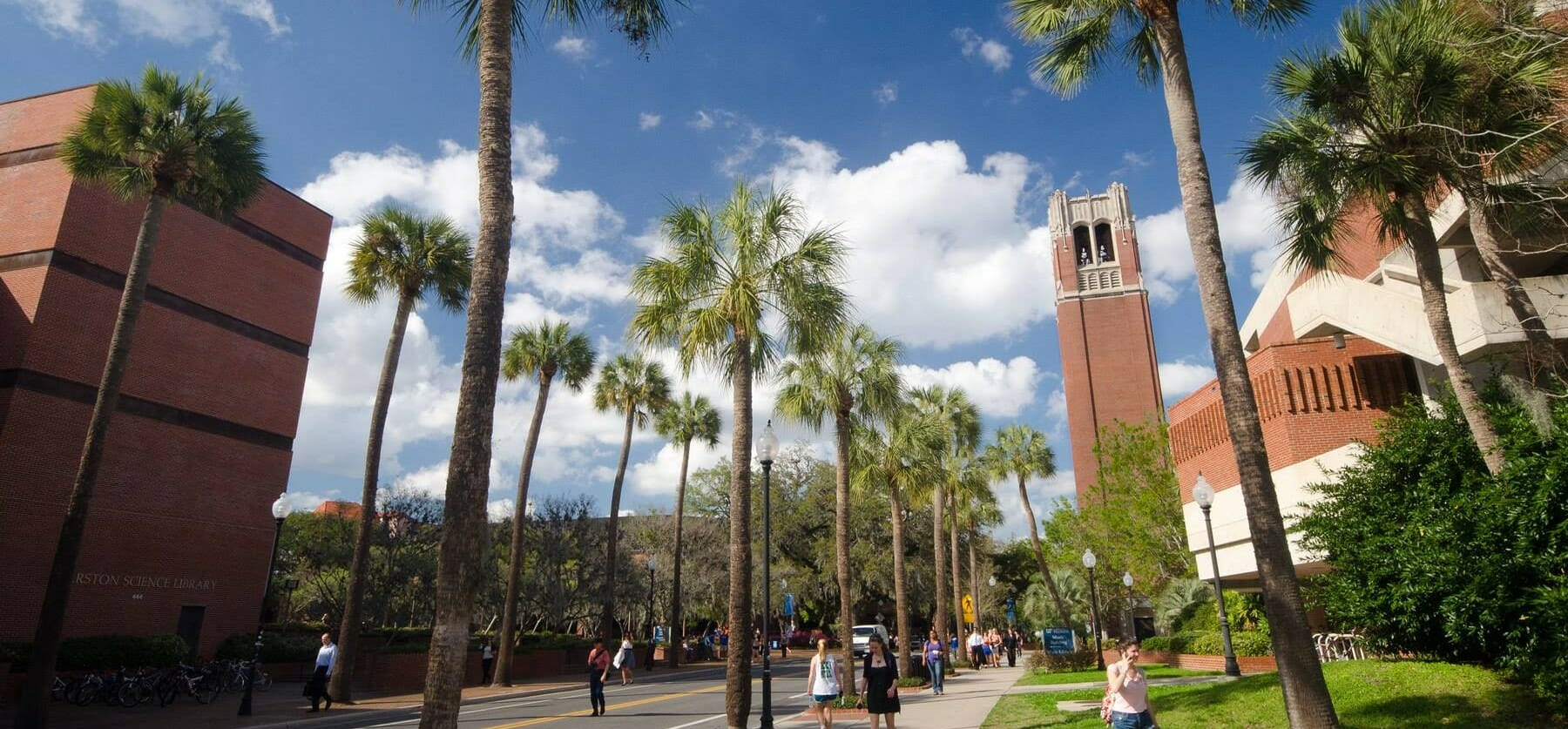 university-of-florida-linguistics-degree